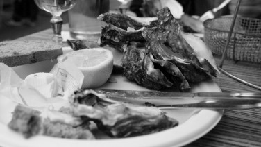 Huîtres d'Oléron en saison