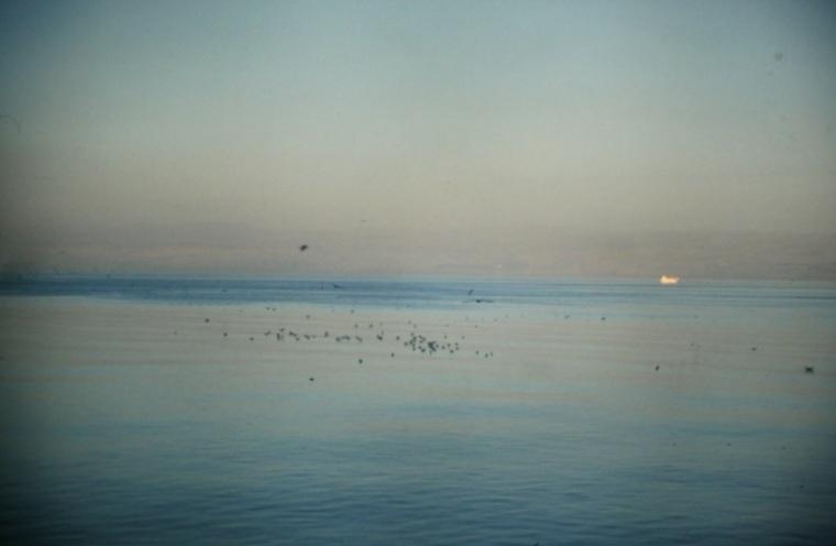 El mar de los Sirtos (Basata, 1997)